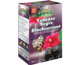 Vedda - infusion cassis noir - 75gr