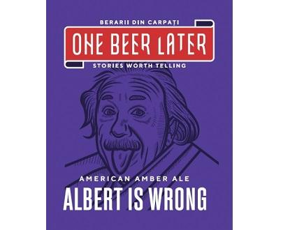 albert is wrong one beer later biere artisanale roumaine